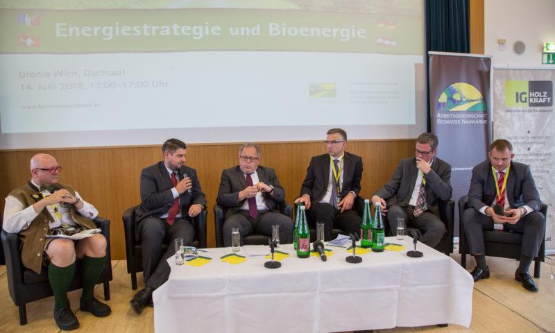 Energiestrategie und Bioenergie