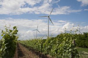 Windkraftanlage im Bezirk Neusiedl am See