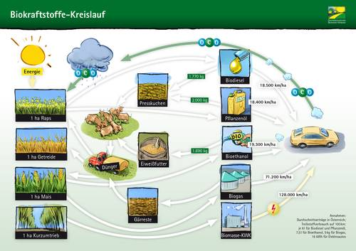 Biokraftstoffe-Kreislauf