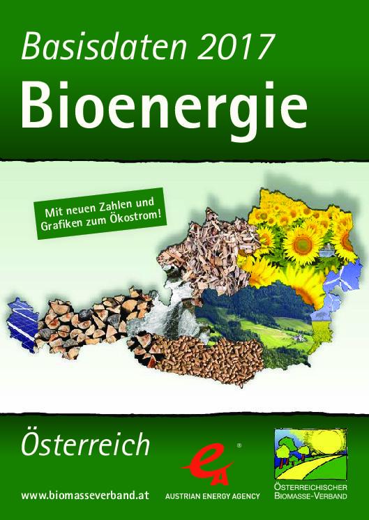 Basisdaten Bioenergie 2017
