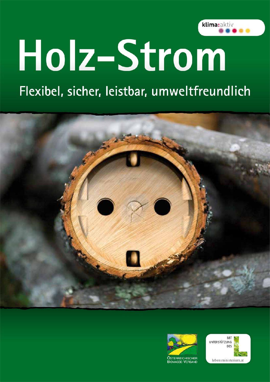 Holz-Strom