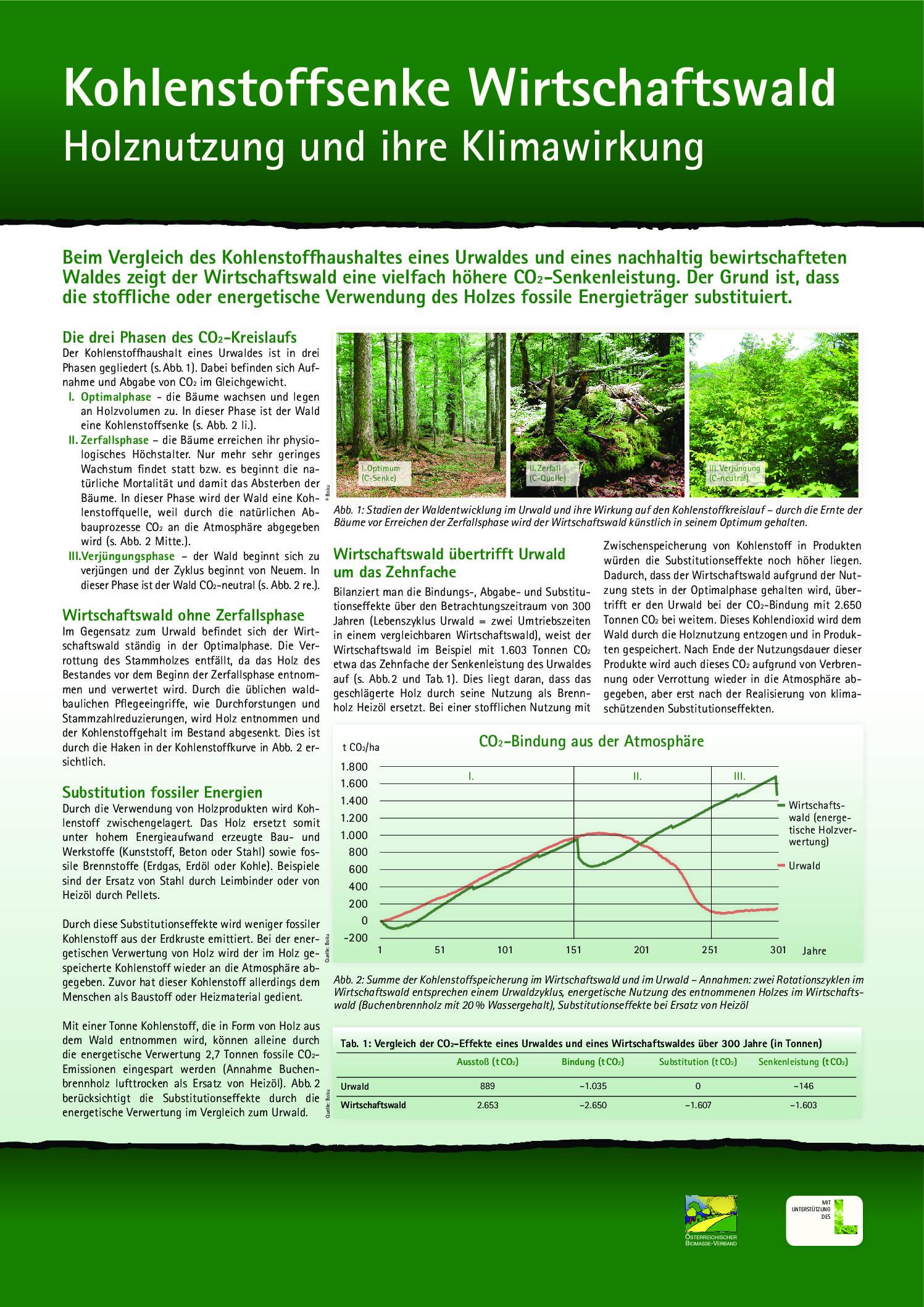 Kohlenstoffsenke Wirtschaftswald