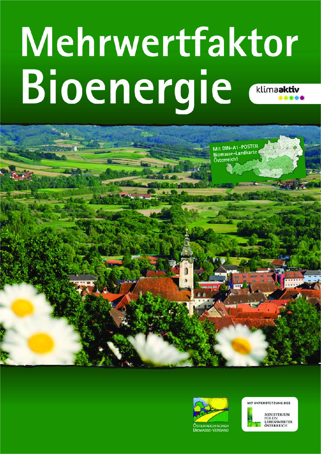 Mehrwertfaktor Bioenergie